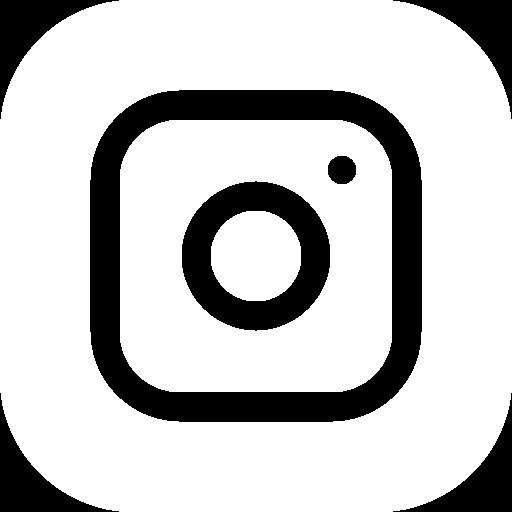 icone-reseau-social-instagram